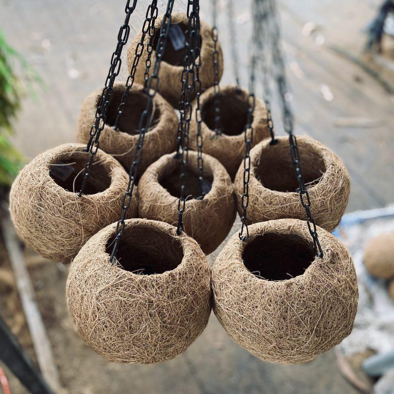 베트남 코코다마 - 코코하이텍